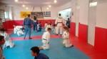 Κοινή προπόνηση για το τμήμα judo!