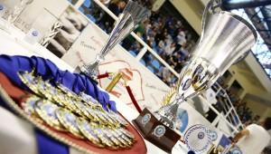 Με Άρη στα ημιτελικά του Κυπέλλου Ελλάδος Βόλεϊ γυναικών!