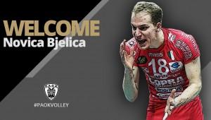 Παίκτης του ΠΑΟΚ ο Novica Bjelica