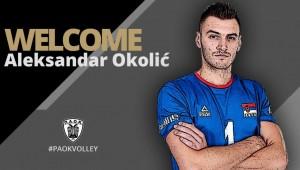 Παίκτης του ΠΑΟΚ ο Aleksandar Okolić
