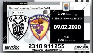 Live Stream: ΠΑΟΚ ΚΥΑΝΑ-Νίκη Λευκάδας