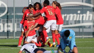 Το προφίλ της SL Benfica